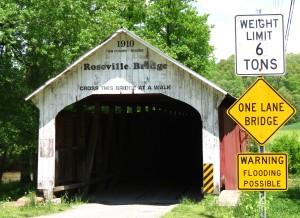 IMG_9198 Roseville Bridge