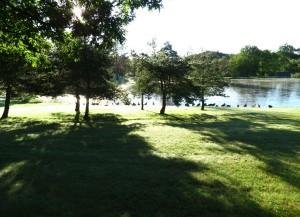 IMG_1101 Kenisee Lake Pond