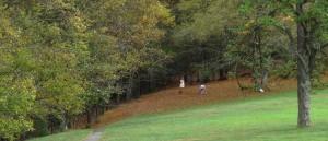 IMG_2722 Cumberland Knob Trail