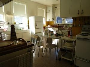 Their 1950's kitchen
