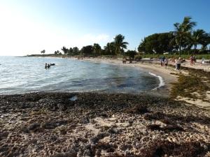 Sombrero Beach 2