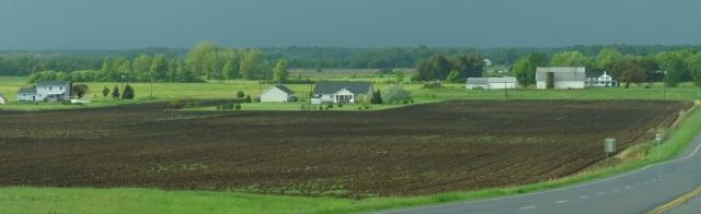 NY Farm