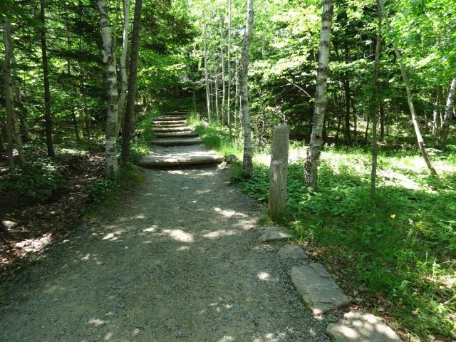 path sign 1
