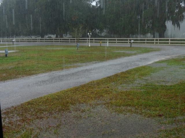 rain 1