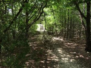 campsite path