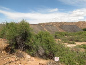 Tailings from an old mine