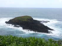 The northernmost island of the main islands - just north of the lighthouse.
