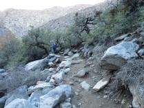 canyon 5